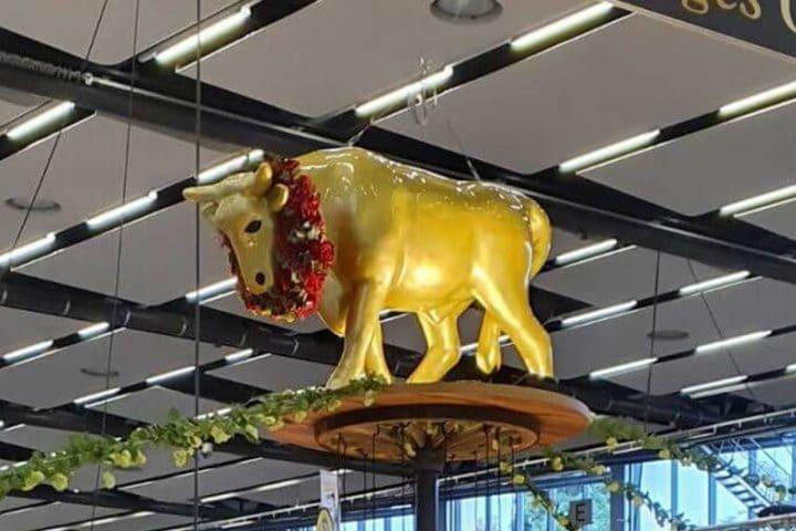 Gold Ochsen Intergastra 2020